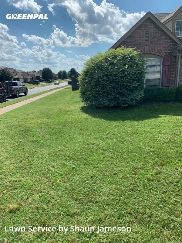 Grass Cutin Owasso,74055,Yard Cutting by Premier Lawn Care , work completed in Jul , 2020