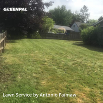 Lawn Care Servicein Portland,97233,Yard Mowing by Pacific Cut Lawn Care, work completed in Jun , 2020