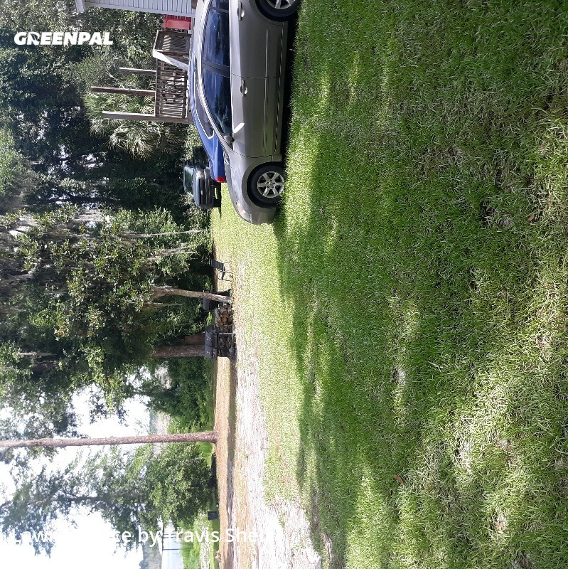 Lawn Maintenancein Hawthorne,32640,Lawn Cutting by Grassmasters Of N Fl , work completed in Jul , 2020
