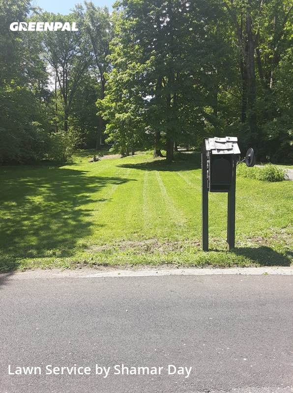 Lawn Servicein Indianapolis,46220,Lawn Care by Day&Mannzservicesllc, work completed in Jul , 2020