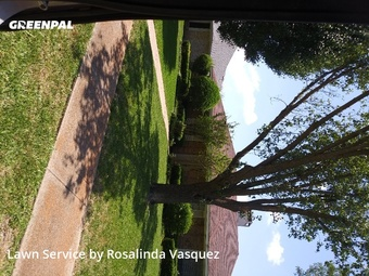 Yard Mowingin Mesquite,75150,Grass Cut by Alcazar Landscaping, work completed in Jul , 2020