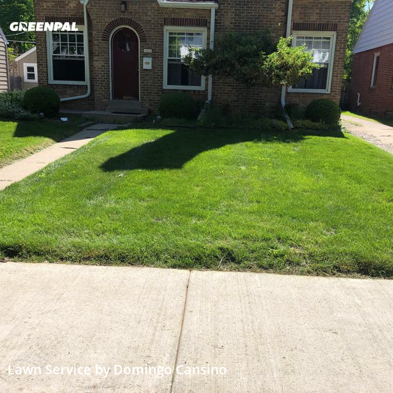 Lawn Maintenancein Whitefish Bay,53217,Yard Cutting by Tri Stars Landscaping, work completed in Aug , 2020