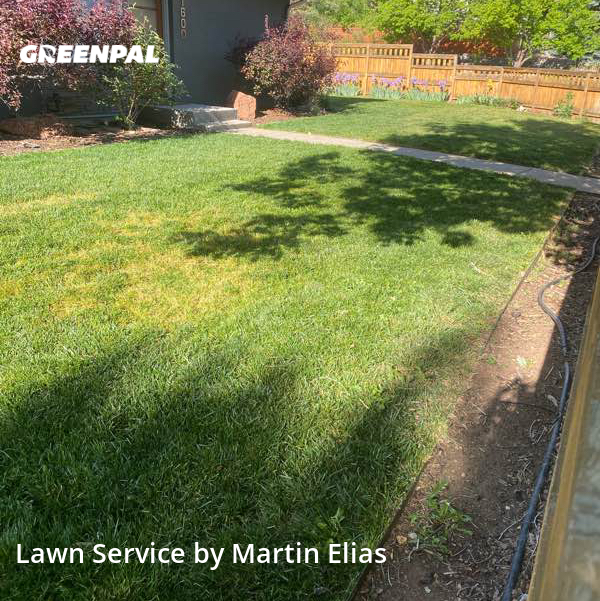 Lawn Care Servicein Boulder,80304,Yard Cutting by Elias Landscape , work completed in Jul , 2020
