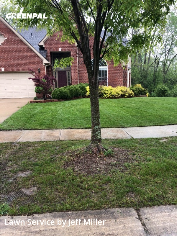 Lawn Mowingin Novi,48375,Yard Cutting by Millers Property Ser, work completed in Jul , 2020