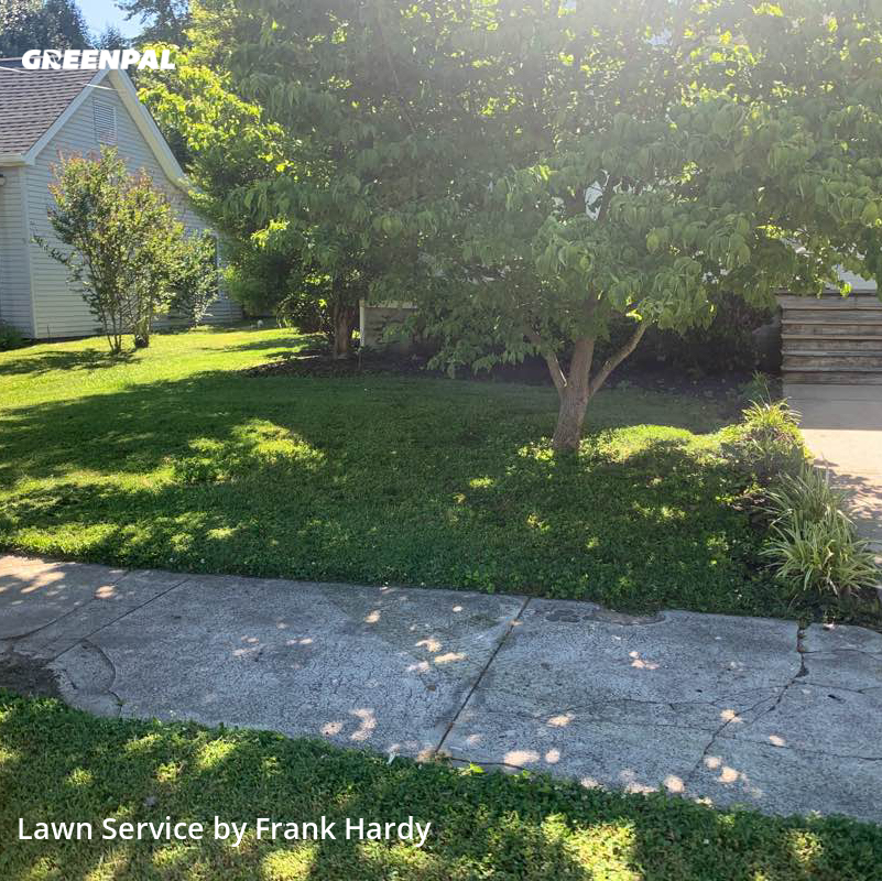 Lawn Servicein Springfield,37172,Lawn Mow by Hardy's Elite Scapes, work completed in Jul , 2020