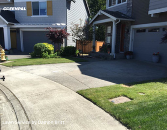 Lawn Servicein Auburn,98092,Grass Cutting by A Kut Above , work completed in Jun , 2020