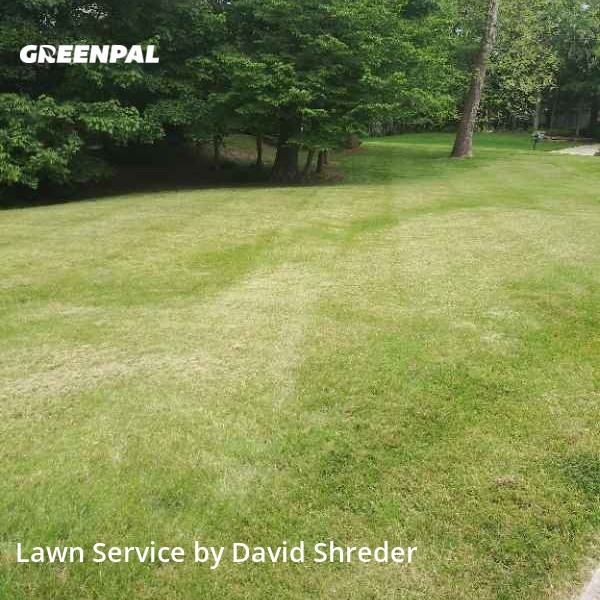 Lawn Mowingin Zionsville,46077,Lawn Care Service by Shredz Mowing & Handy, work completed in Sep , 2020