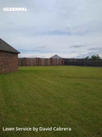 Lawn Cutin Moore,73160,Lawn Maintenance by Greentreelawncare, work completed in Jul , 2020