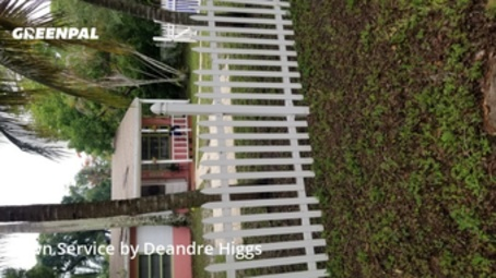 Lawn Maintenancein Fort Lauderdale,33315,Grass Cut by Bcb Lawn Care, work completed in Jul , 2020