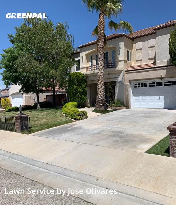 Lawn Mowin Palmdale,93551,Lawn Maintenance by Olivares Gardening , work completed in Jul , 2020