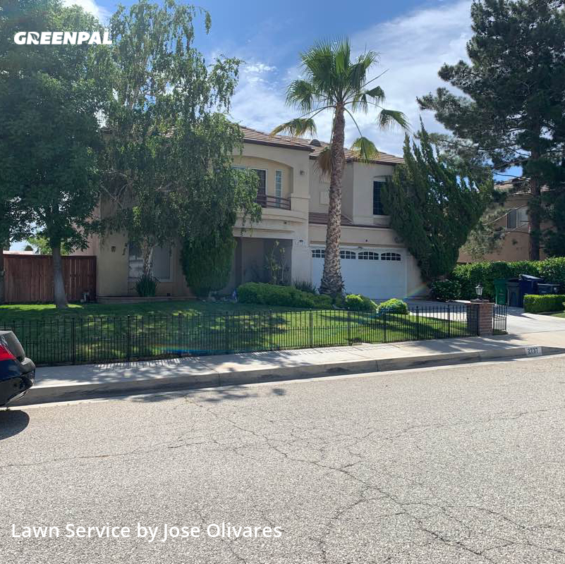Grass Cuttingin Palmdale,93551,Lawn Service by Olivares Gardening , work completed in Oct , 2020