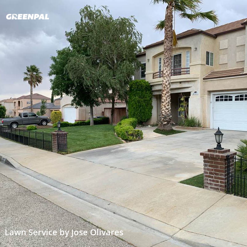 Lawn Servicein Palmdale,93551,Lawn Mow by Olivares Gardening , work completed in Jul , 2020
