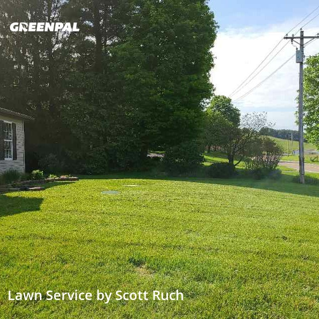 Grass Cutin Newark,43056,Lawn Mow by S&M Lawn And Tree, work completed in Sep , 2020