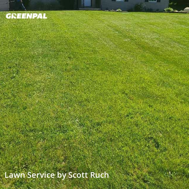 Lawn Mowingin Newark,43056,Grass Cut by S&M Lawn And Tree, work completed in Sep , 2020