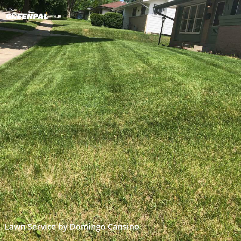 Grass Cutin Waukesha,53189,Lawn Mowing Service by Tri Stars Landscapin, work completed in Jul , 2020