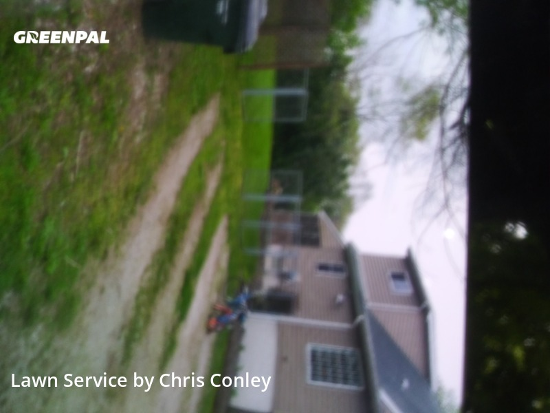 Yard Cuttingin Shelby Charter Township,48317,Lawn Care Service by Marie Maintenance, work completed in Aug , 2020