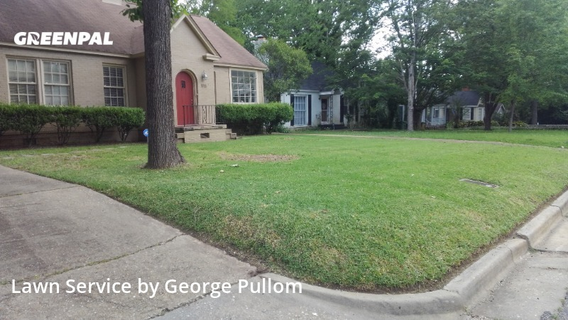Lawn Mowing Servicein Montgomery,36104,Yard Mowing by Cedar Hill Lawn, work completed in Aug , 2020