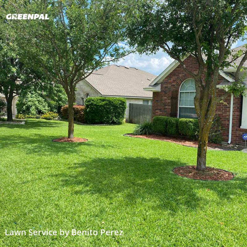 Lawn Mowin Pflugerville,78660,Lawn Mowing Service by Benzki Lawn Care, work completed in Jul , 2020