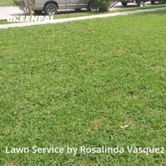 Lawn Servicein Mesquite,75149,Grass Cutting by Alcazar Landscaping, work completed in Jul , 2020
