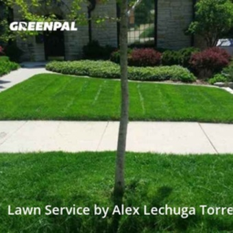 Grass Cutin Wauwatosa,53226,Yard Cutting by Torres Lawn Care, work completed in May , 2020