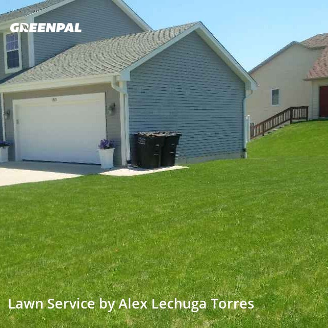 Grass Cuttingin Greenfield,53221,Lawn Care Service by Torres Lawn Care, work completed in Aug , 2020
