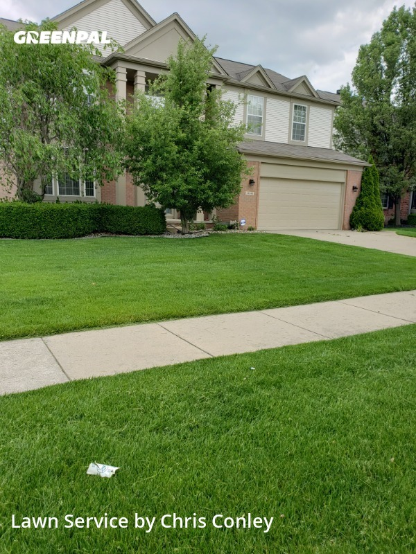 Lawn Carein Sterling Heights,48312,Lawn Cut by Marie Maintenance, work completed in Aug , 2020