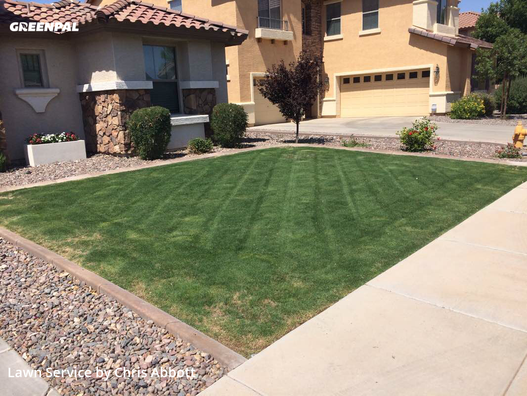 Lawn Mowingin Chandler,85286,Lawn Service by Plugman Lawn Service, work completed in Jul , 2020
