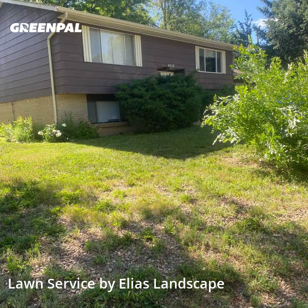 Yard Cuttingin Boulder,80303,Lawn Care by Elias Landscape , work completed in Jul , 2020