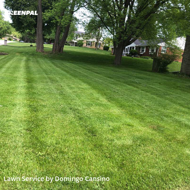 Yard Mowingin Brookfield,53005,Lawn Maintenance by Tri Stars Landscaping, work completed in Aug , 2020