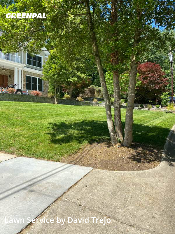 Grass Cuttingin Bethesda,20817,Lawn Mow by Jqt Landscaping, work completed in Jul , 2020