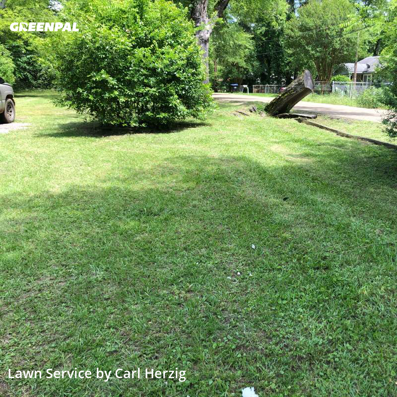 Lawn Mowing Servicein Longview,75602,Lawn Mowing by Patriot Lawn, work completed in Jul , 2020