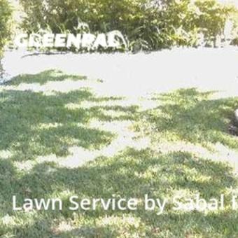 Yard Cuttingin Plantation,33324,Lawn Cut by Sabal Palm Lawn Srv., work completed in Jul , 2020