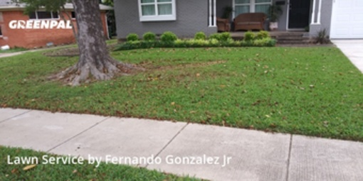 Lawn Maintenancein Garland,75041,Lawn Mow by Bent Twig, work completed in Jul , 2020