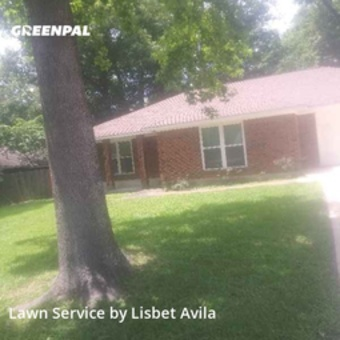 Yard Cuttingin Conroe,77304,Lawn Care Service by Lilies Landscaping , work completed in Jul , 2020