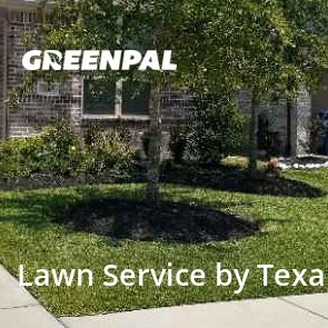 Lawn Cuttingin Richmond,77407,Lawn Cut by Texan Landscaping Co., work completed in Aug , 2020