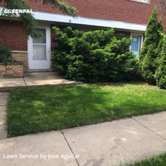 Lawn Cutin Des Plaines,60016,Lawn Maintenance by Pepeslawncareservices, work completed in Jul , 2020