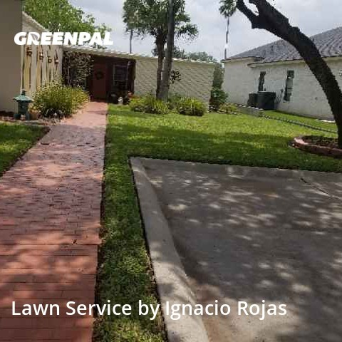 Lawn Mowin Harlingen,78552,Yard Mowing by Rojas Yard Service, work completed in Aug , 2020