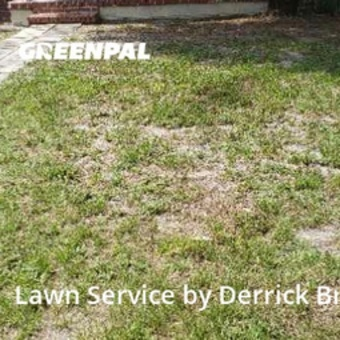 Lawn Maintenancein St Petersburg,33711,Lawn Service by Clean Cutts Lawn , work completed in Sep , 2020