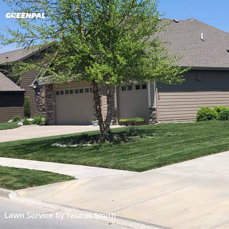 Lawn Cutin Bellevue,68133,Grass Cutting by Your Lawn We Cut, work completed in Sep , 2020