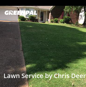 Grass Cuttingin Memphis,38133,Lawn Cut by Lawntech Pros, work completed in Aug , 2020