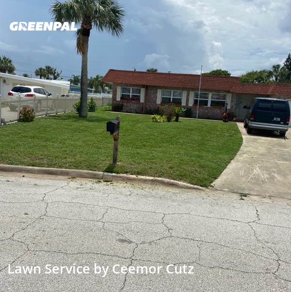 Grass Cutin Daytona Beach,32118,Lawn Mowing Service by Ceemor Cutz, work completed in Jul , 2020