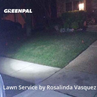 Lawn Cutin Grand Prairie,75054,Lawn Mowing Service by Alcazar Landscaping, work completed in Jul , 2020