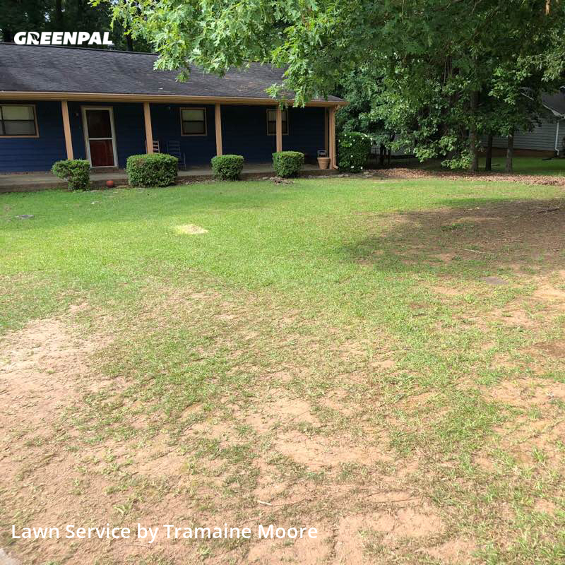 Lawn Maintenancein Snellville,30039,Lawn Care by Over The Hedge Lawn , work completed in Jul , 2020