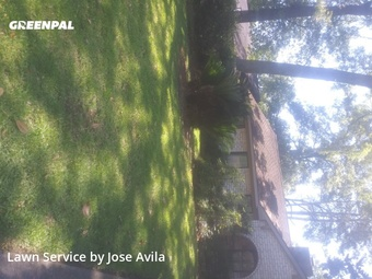 Lawn Mowingin Humble,77339,Lawn Mow by Avila's Lawnscaping , work completed in Jul , 2020