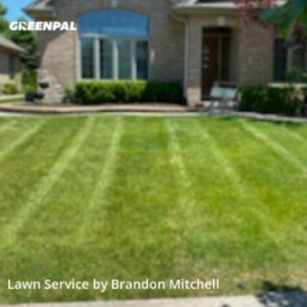 Grass Cuttingin Orland Park,60467,Lawn Service by Elemental Lawn Care, work completed in Aug , 2020