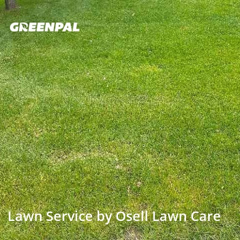 Lawn Cuttingin Blaine,55449,Yard Mowing by Osell Lawn Care, work completed in Aug , 2020