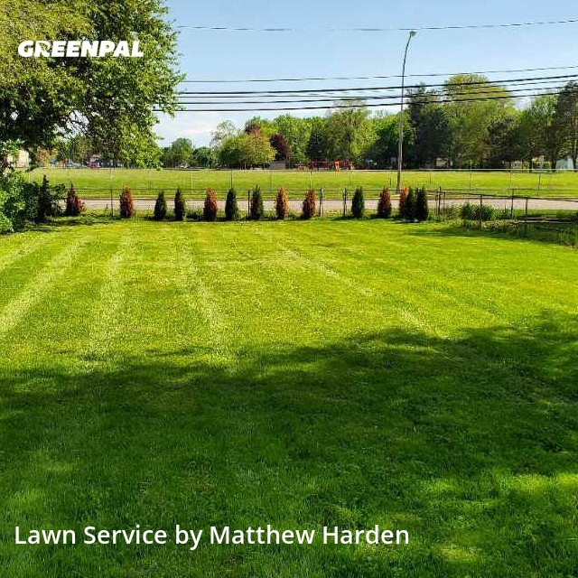 Grass Cutin Royal Oak,48073,Lawn Care by Go Cutters, work completed in Sep , 2020