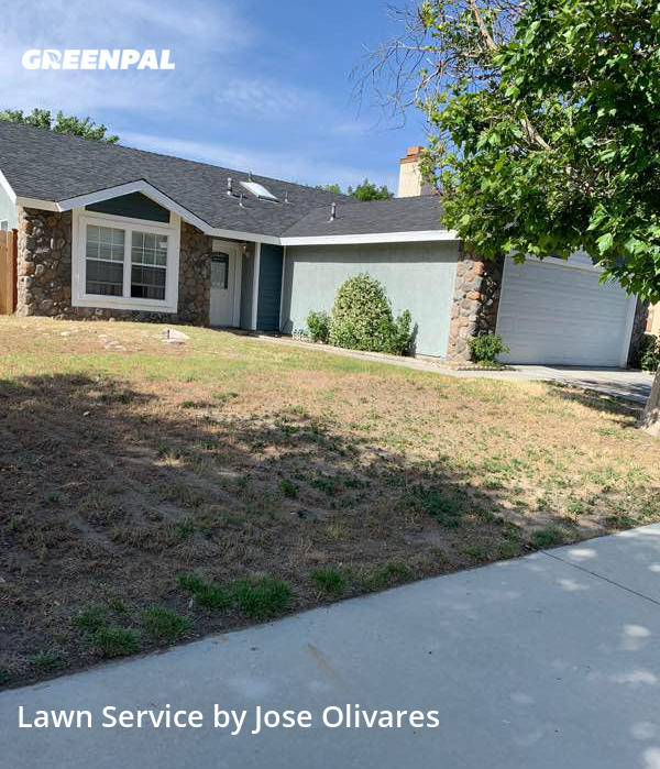 Lawn Carein Lancaster,93535,Yard Cutting by Olivares Gardening , work completed in Sep , 2020