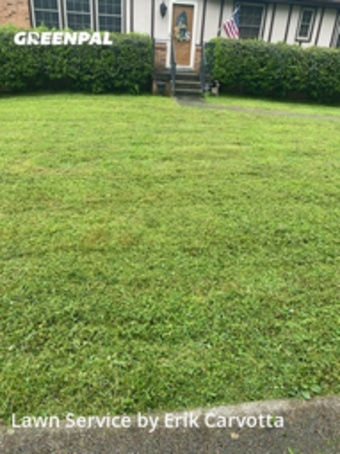 Lawn Cuttingin Nashville,37076,Lawn Mowing Service by Etc Services, work completed in May , 2020