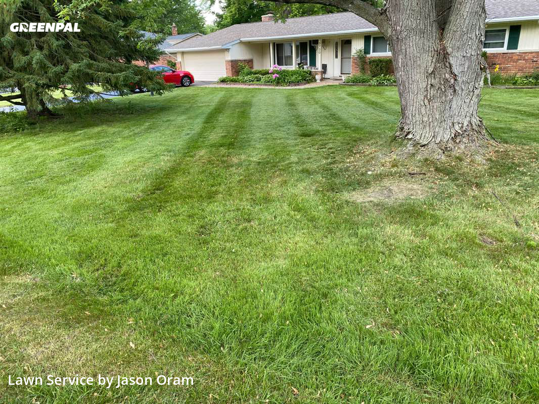 Lawn Maintenancein West Bloomfield Township,48323,Lawn Cutting by Motor City Lawn Care, work completed in Jul , 2020
